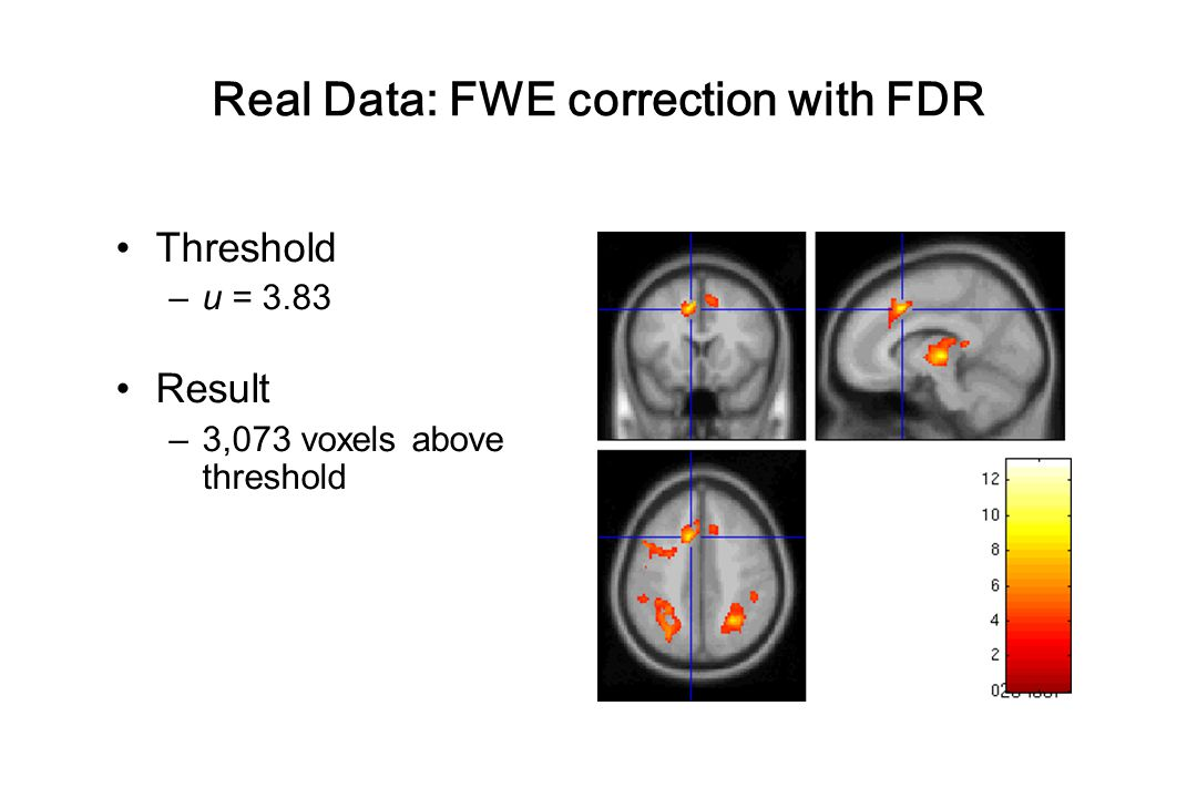 Real Data: FWE correction with FDR