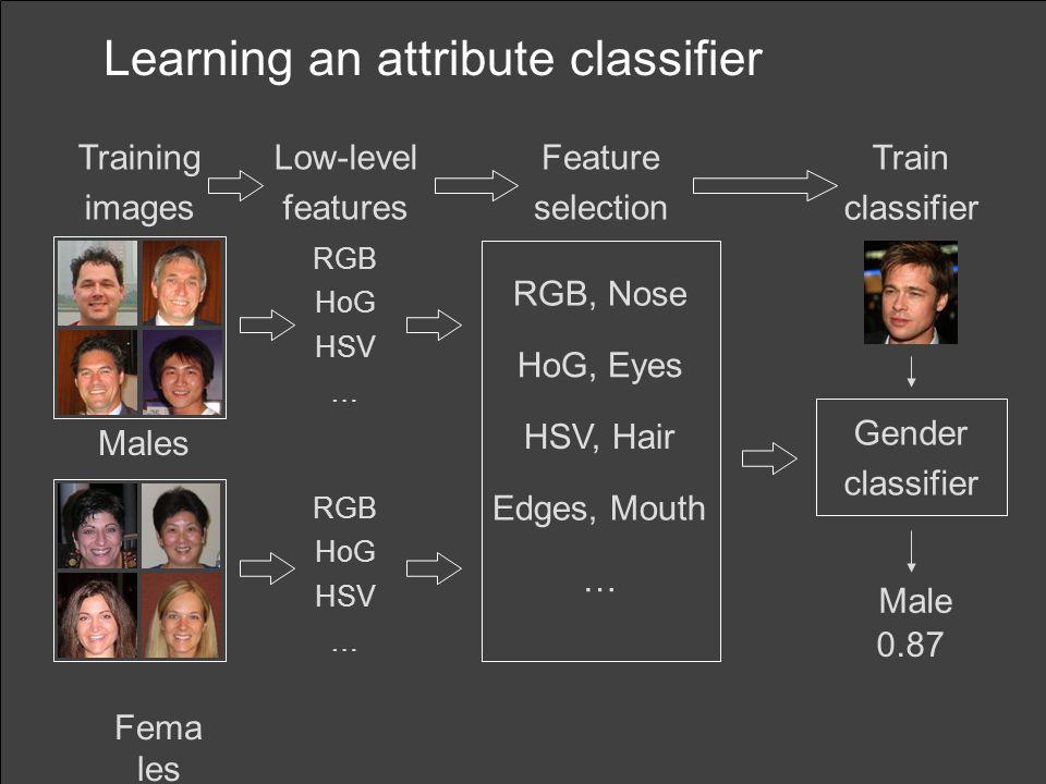 Learning an attribute classifier
