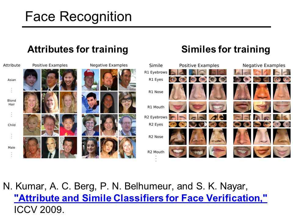 Face Recognition Attributes for training Similes for training