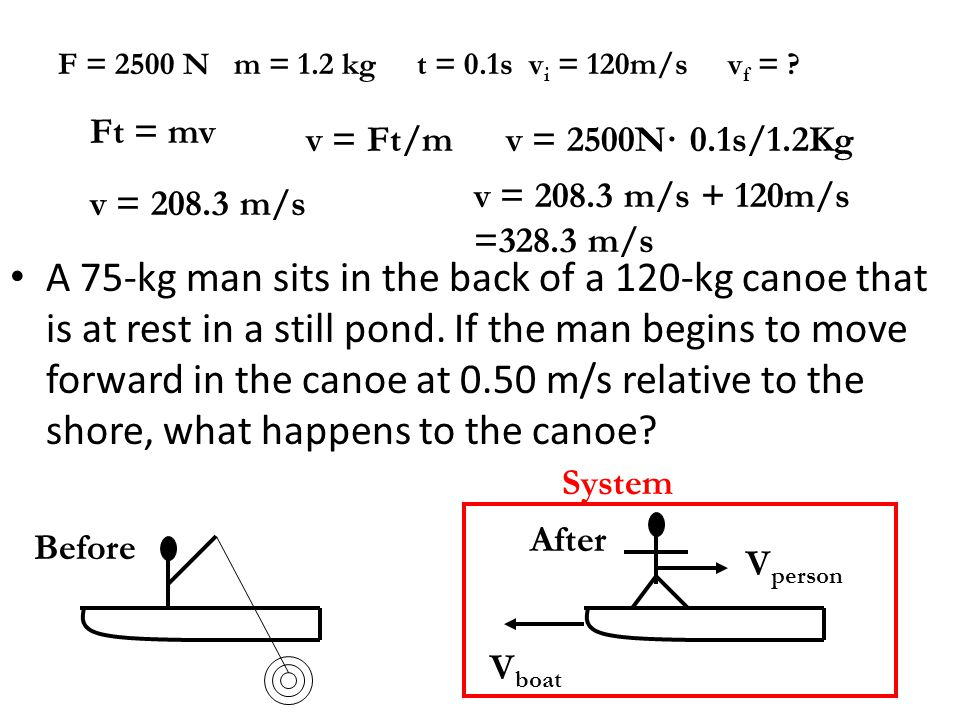 A 75-kg man sits in the back of a 120-kg canoe that is at rest in a still pond. If the man begins to move forward in the canoe at 0.50 m/s relative to the shore, what happens to the canoe