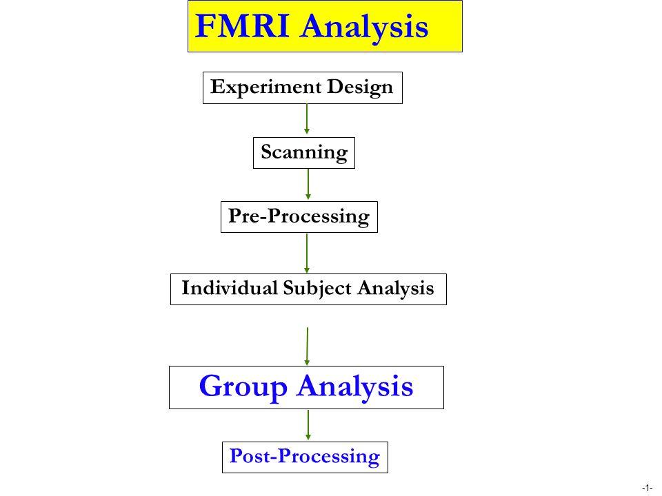 Individual Subject Analysis