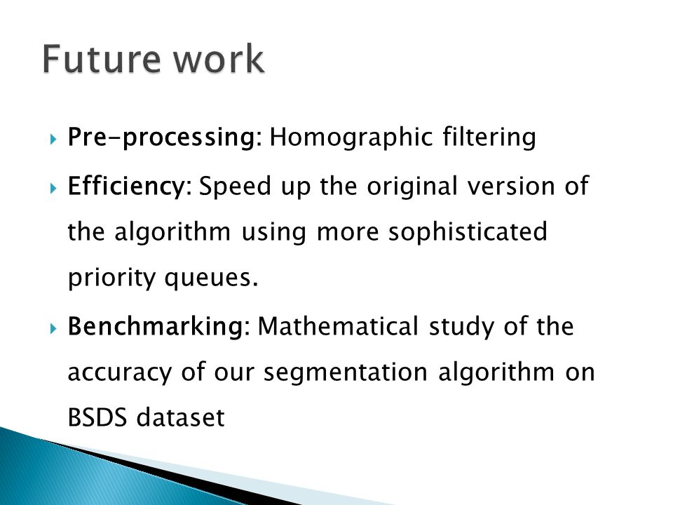 Future work Pre-processing: Homographic filtering