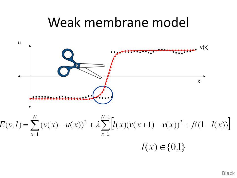 Weak membrane model u v(x) x Black