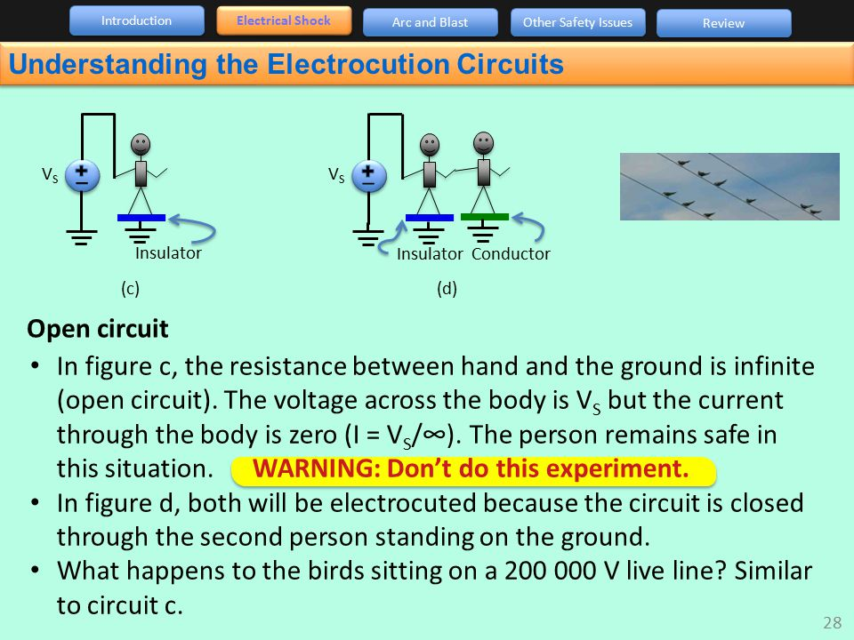 Understanding the Electrocution Circuits