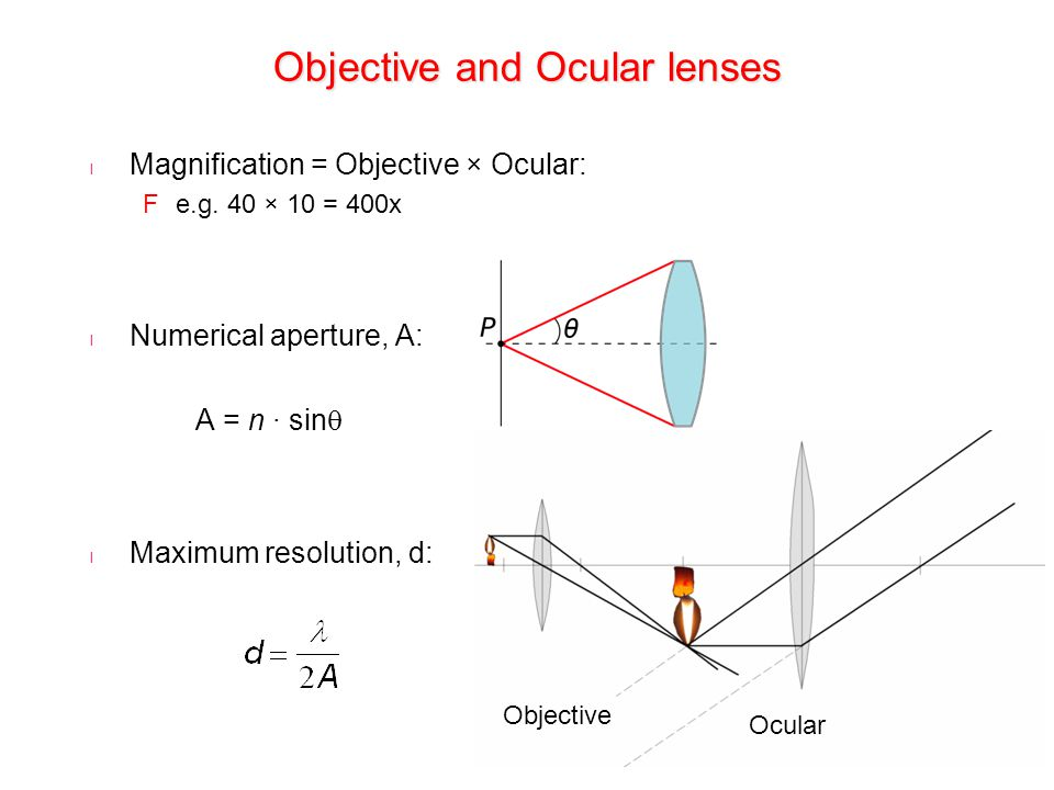 Objective and Ocular lenses