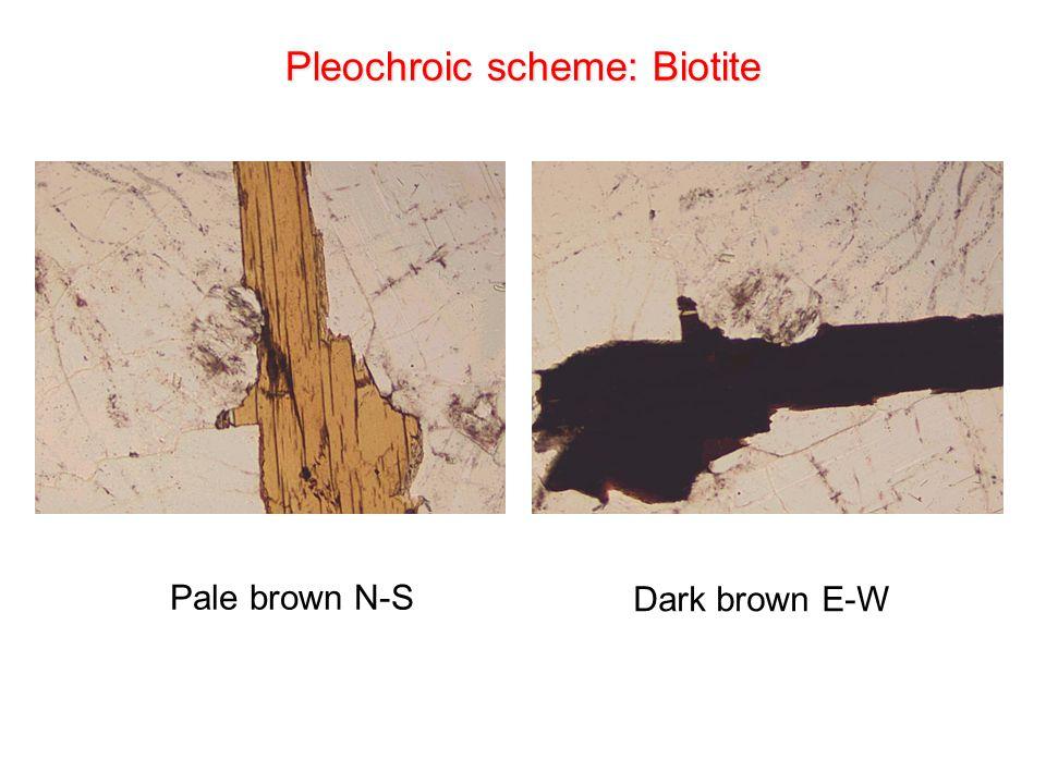 Pleochroic scheme: Biotite