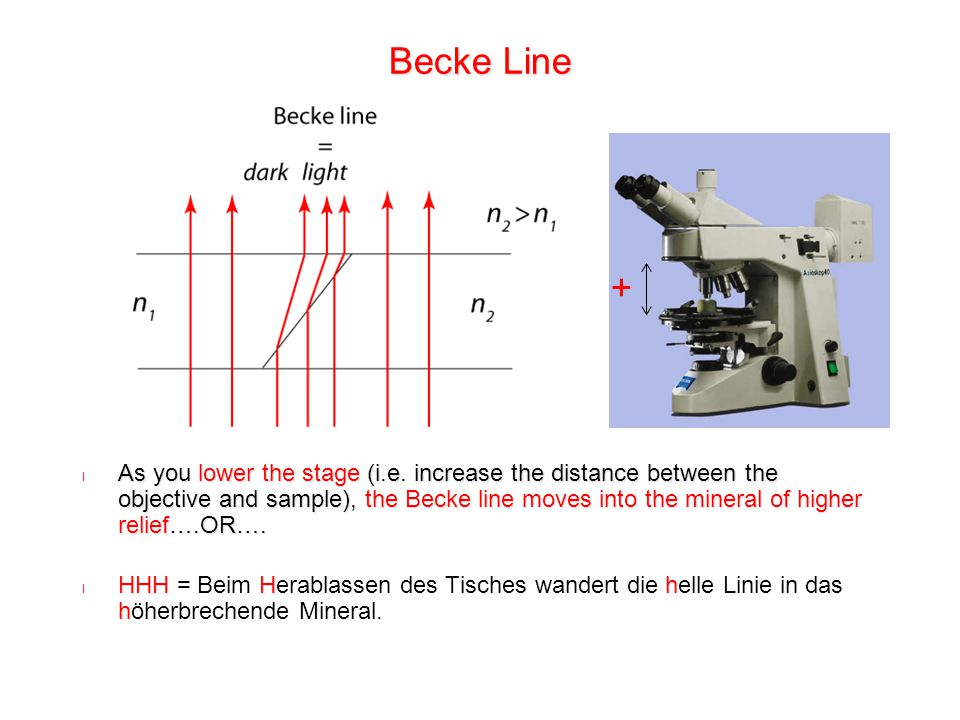 Becke Line +
