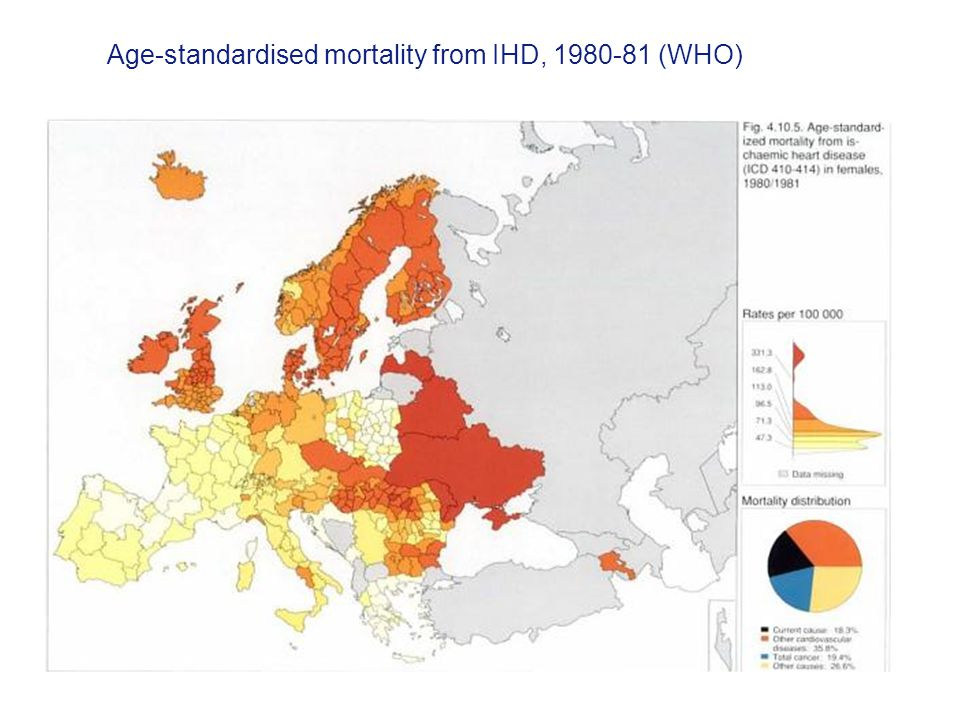 Age-standardised mortality from IHD, 1980-81 (WHO)