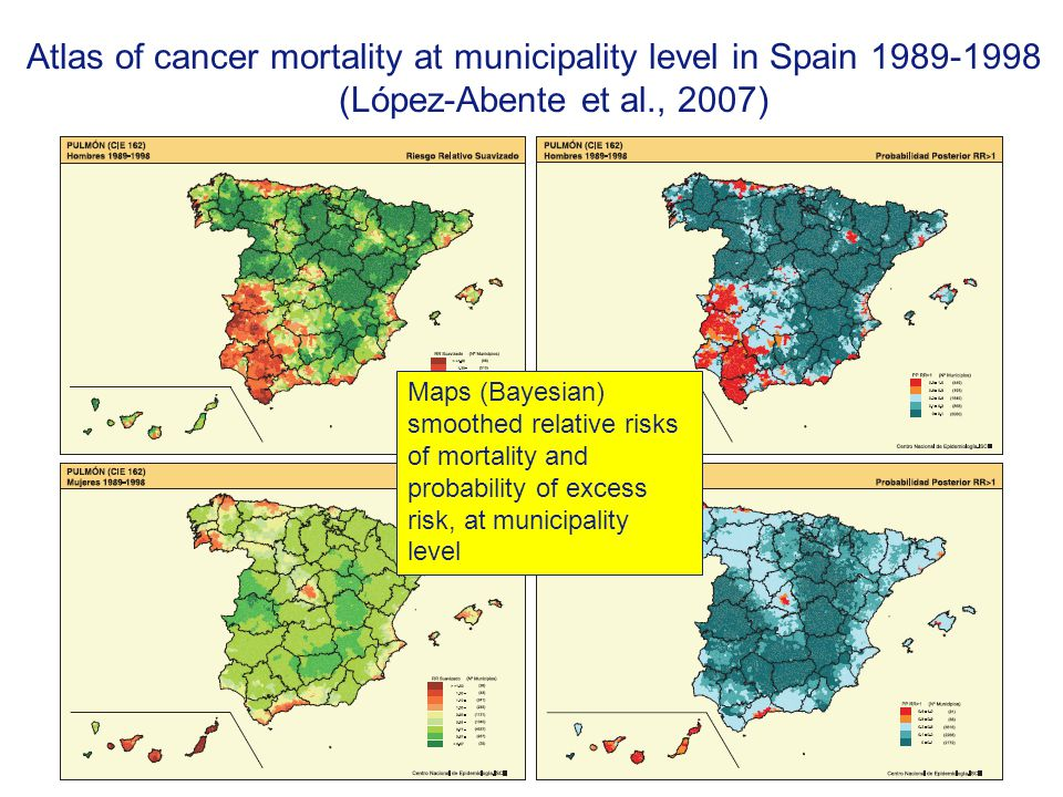 Atlas of cancer mortality at municipality level in Spain 1989-1998 (López-Abente et al., 2007)
