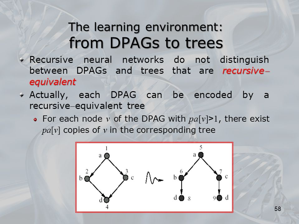 The learning environment: from DPAGs to trees