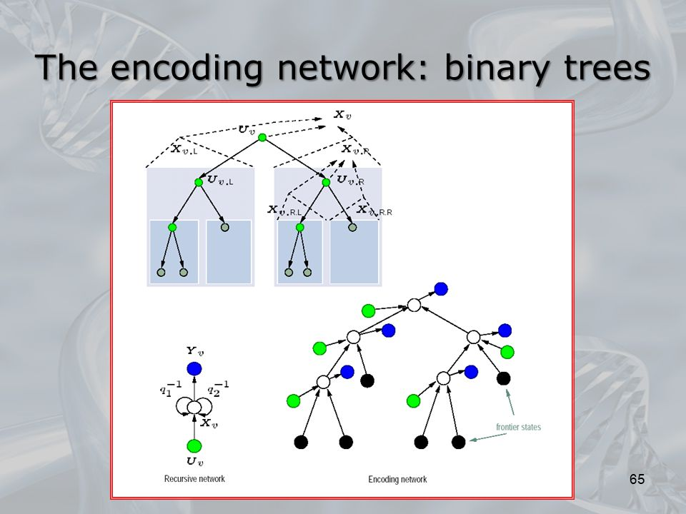 The encoding network: binary trees