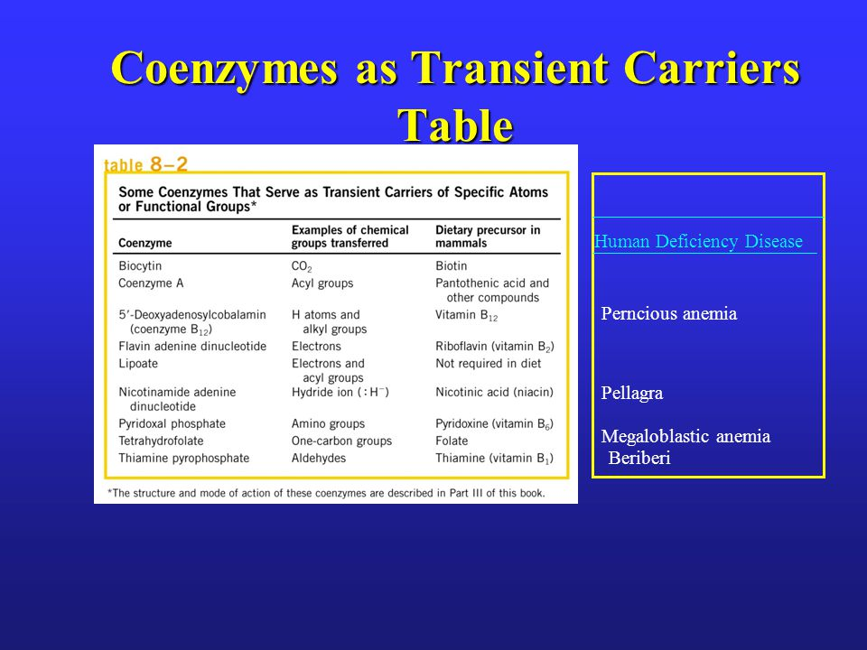 Coenzymes as Transient Carriers Table