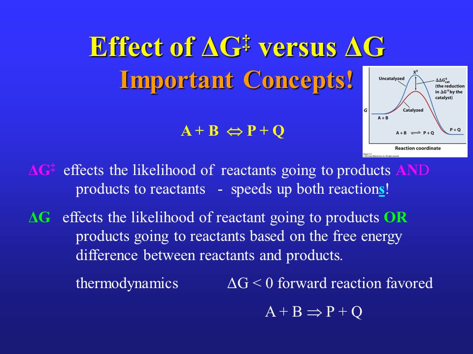 Effect of ΔG‡ versus ΔG Important Concepts!