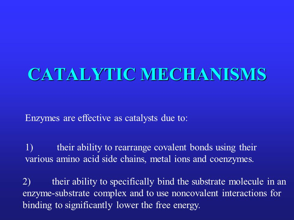 CATALYTIC MECHANISMS Enzymes are effective as catalysts due to: