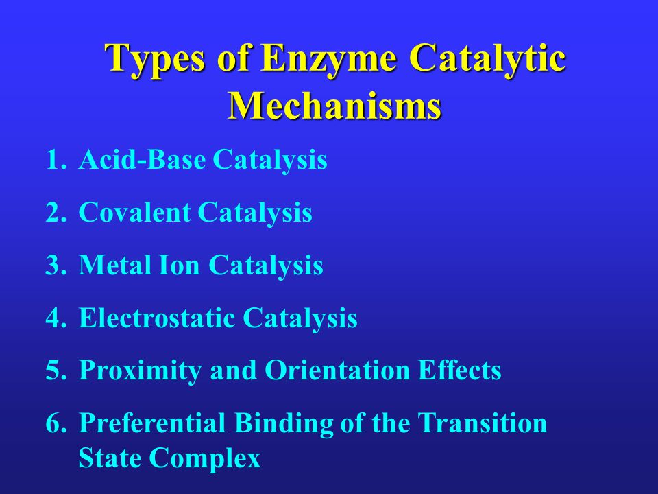 Types of Enzyme Catalytic Mechanisms