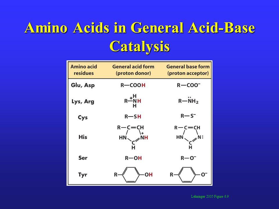 Amino Acids in General Acid-Base Catalysis
