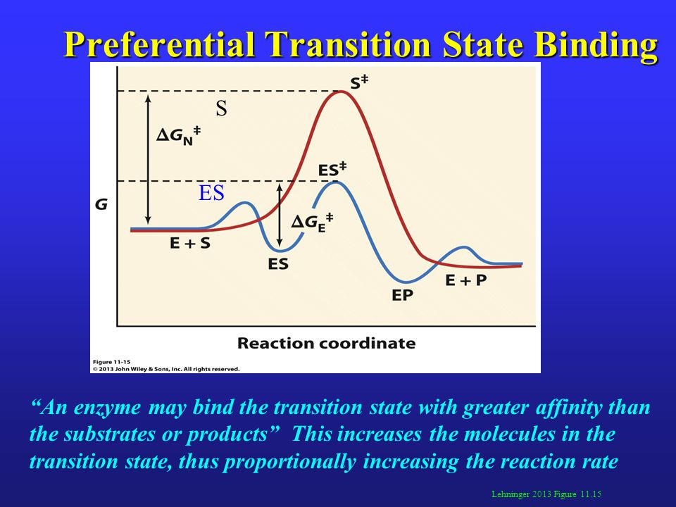 Preferential Transition State Binding