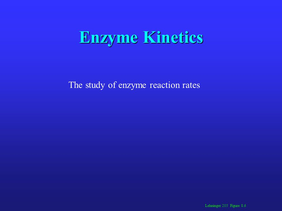 The study of enzyme reaction rates