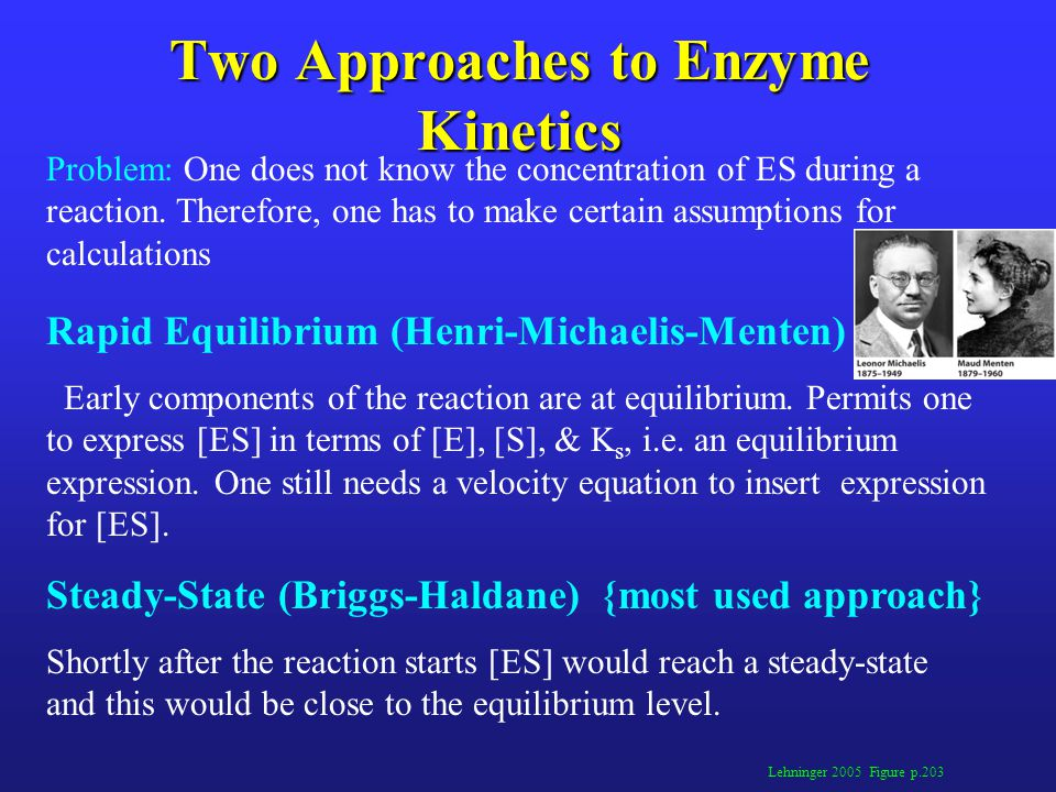 Two Approaches to Enzyme Kinetics