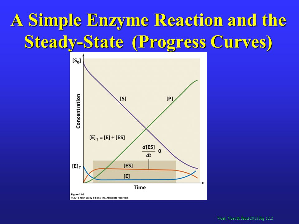 A Simple Enzyme Reaction and the Steady-State (Progress Curves)