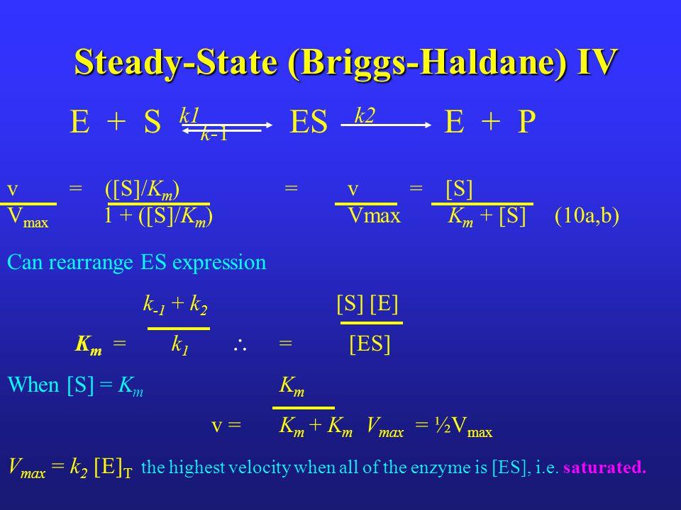 Steady-State (Briggs-Haldane) IV