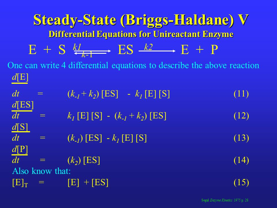 Steady-State (Briggs-Haldane) V Differential Equations for Unireactant Enzyme
