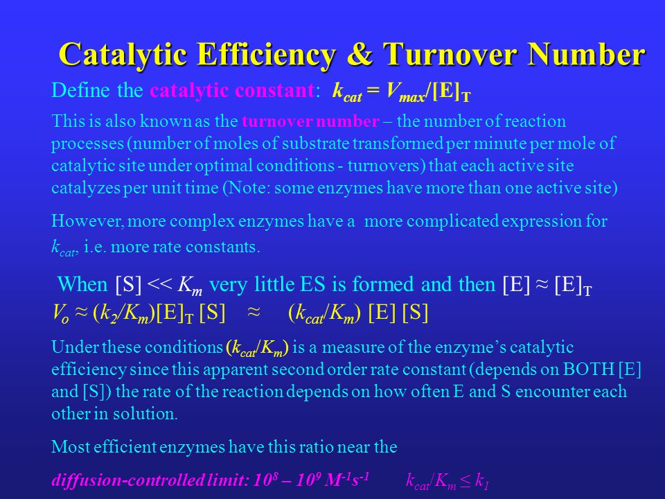 Catalytic Efficiency & Turnover Number
