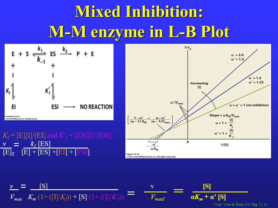 Mixed Inhibition: M-M enzyme in L-B Plot