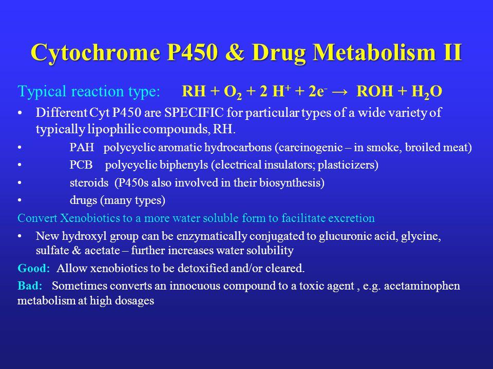 Cytochrome P450 & Drug Metabolism II