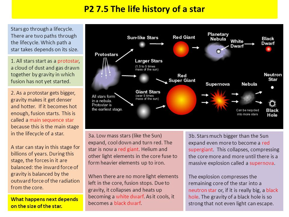 P2 7.5 The life history of a star
