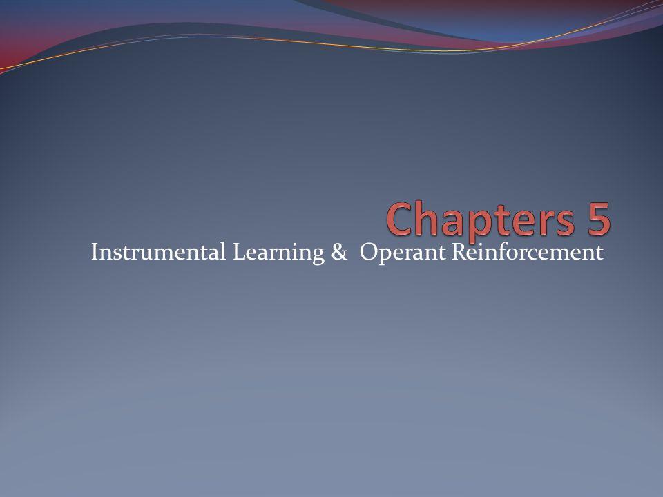 Instrumental Learning & Operant Reinforcement