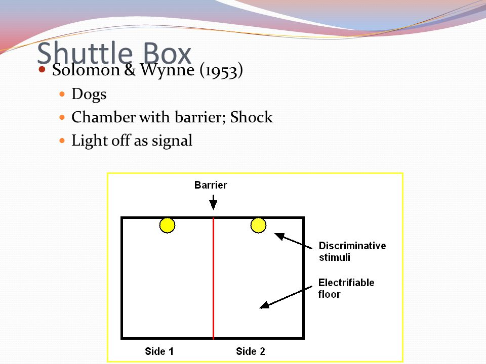 Shuttle Box Solomon & Wynne (1953) Dogs Chamber with barrier; Shock