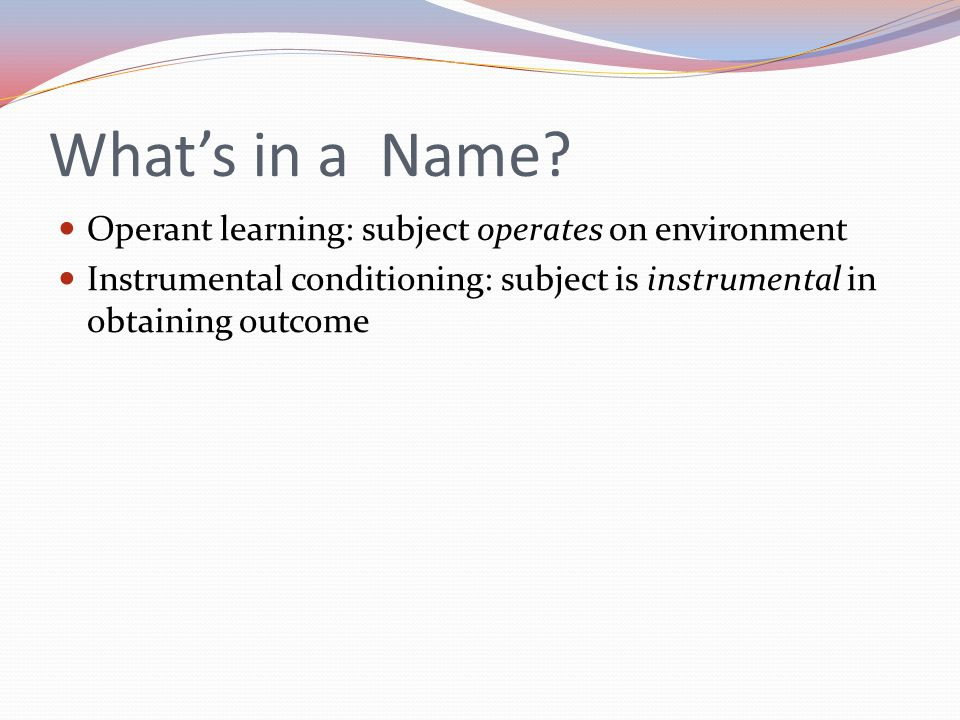 What's in a Name Operant learning: subject operates on environment