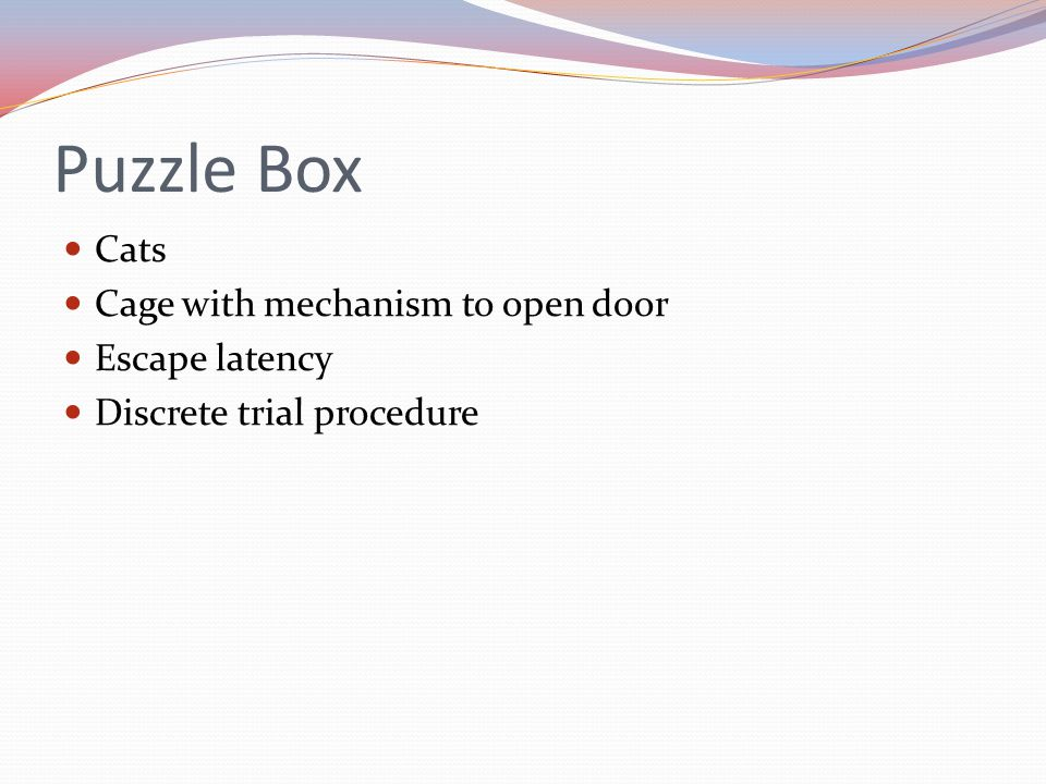 Puzzle Box Cats Cage with mechanism to open door Escape latency