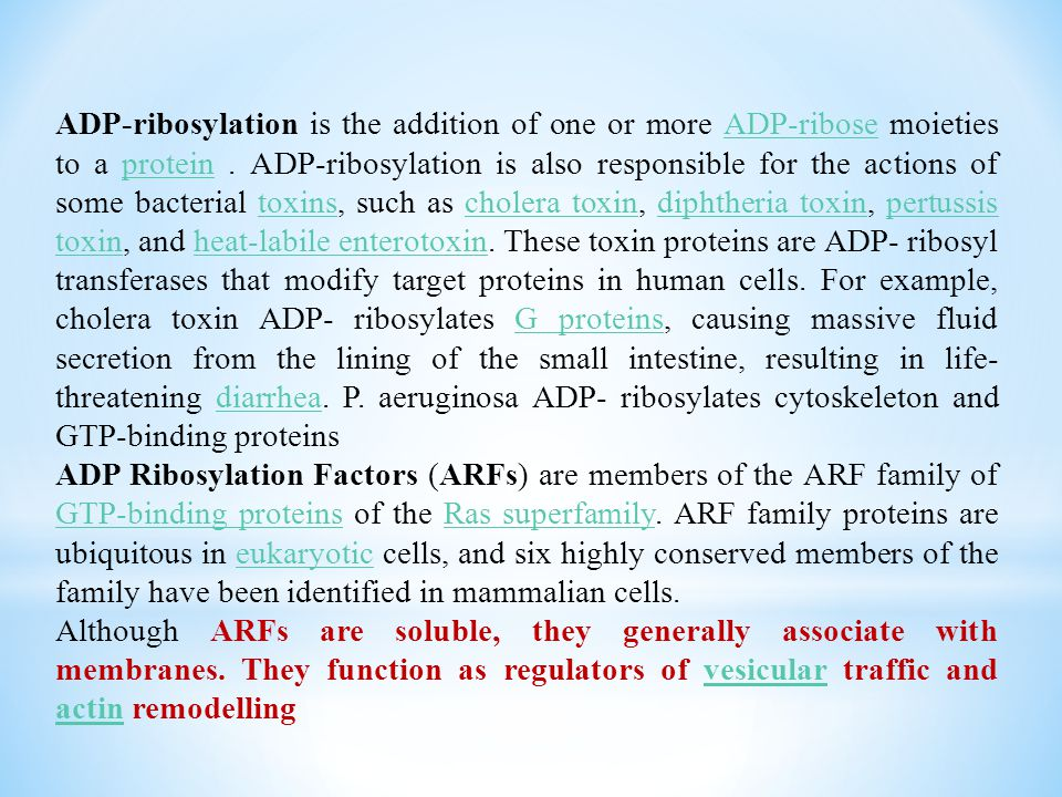 ADP-ribosylation is the addition of one or more ADP-ribose moieties to a protein . ADP-ribosylation is also responsible for the actions of some bacterial toxins, such as cholera toxin, diphtheria toxin, pertussis toxin, and heat-labile enterotoxin. These toxin proteins are ADP- ribosyl transferases that modify target proteins in human cells. For example, cholera toxin ADP- ribosylates G proteins, causing massive fluid secretion from the lining of the small intestine, resulting in life-threatening diarrhea. P. aeruginosa ADP- ribosylates cytoskeleton and GTP-binding proteins