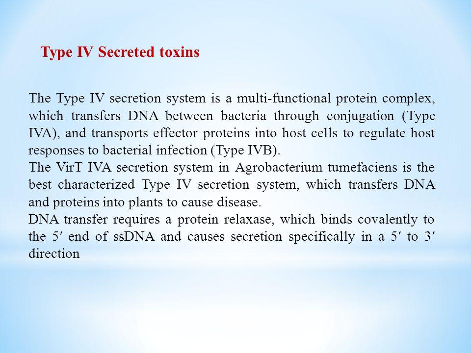 Type IV Secreted toxins