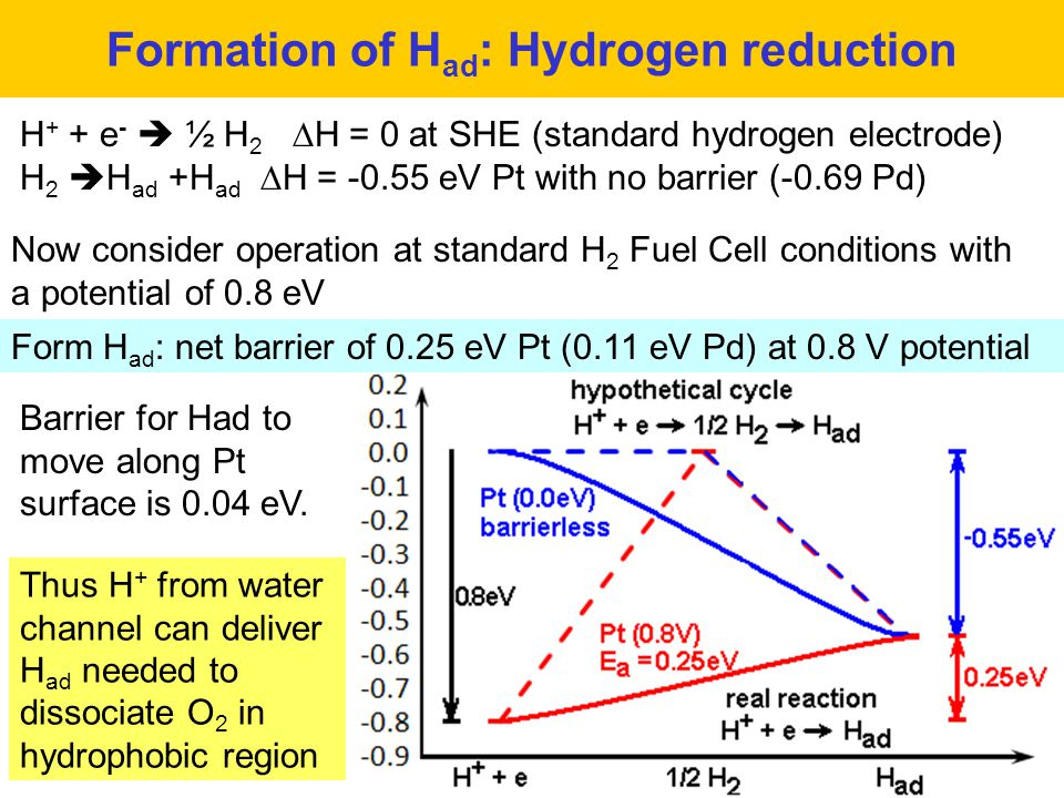 Formation of Had: Hydrogen reduction