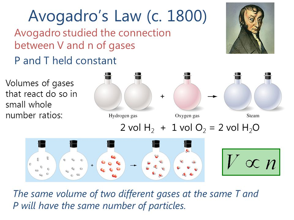 Avogadro's Law (c. 1800) Avogadro studied the connection between V and n of gases. P and T held constant.