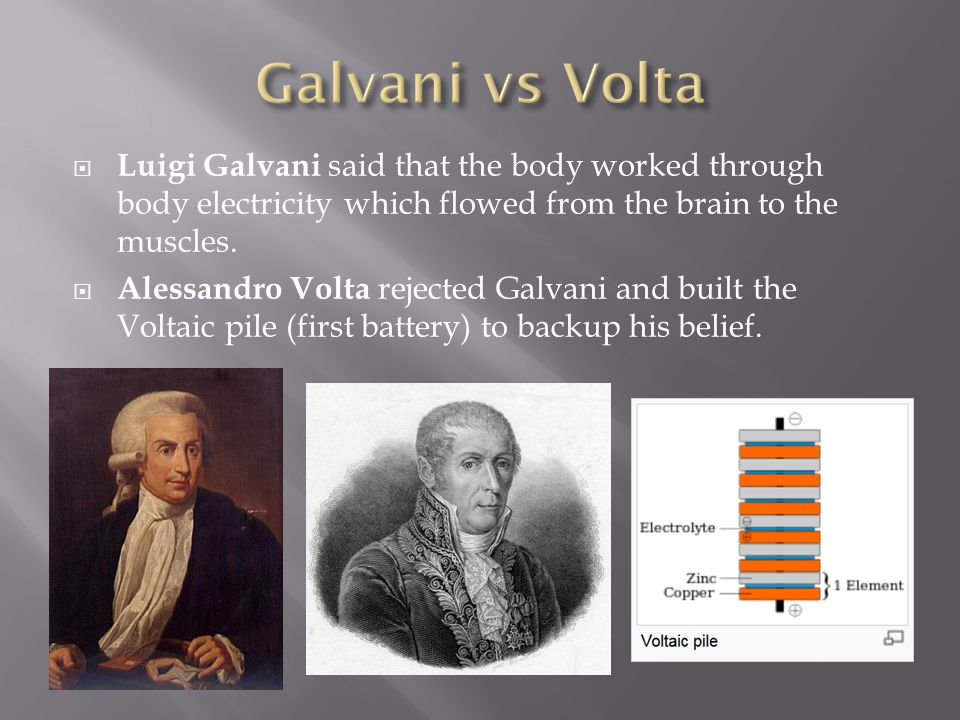 Galvani vs Volta Luigi Galvani said that the body worked through body electricity which flowed from the brain to the muscles.
