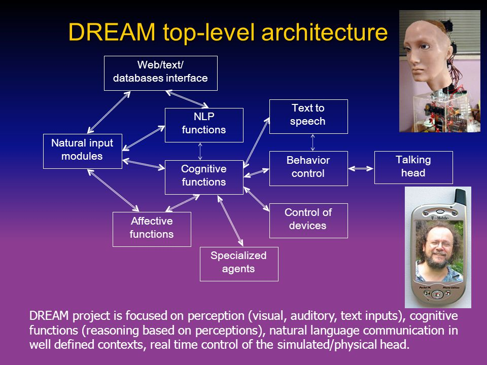 DREAM top-level architecture