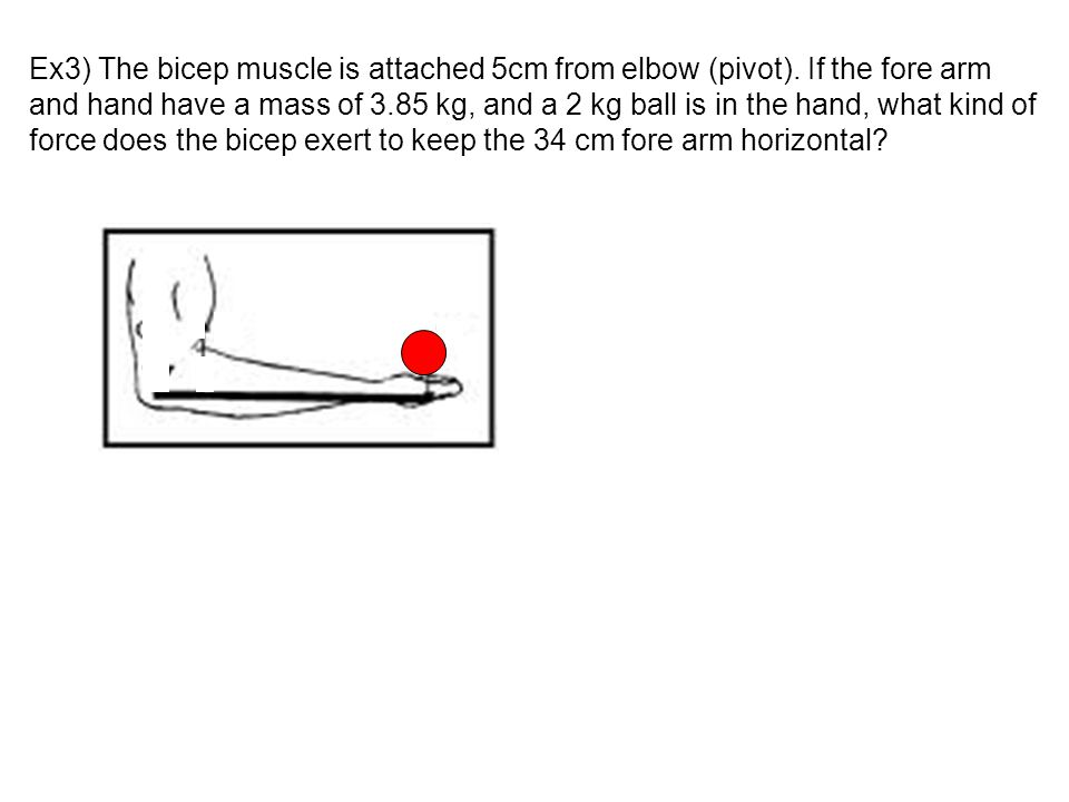 Ex3) The bicep muscle is attached 5cm from elbow (pivot)