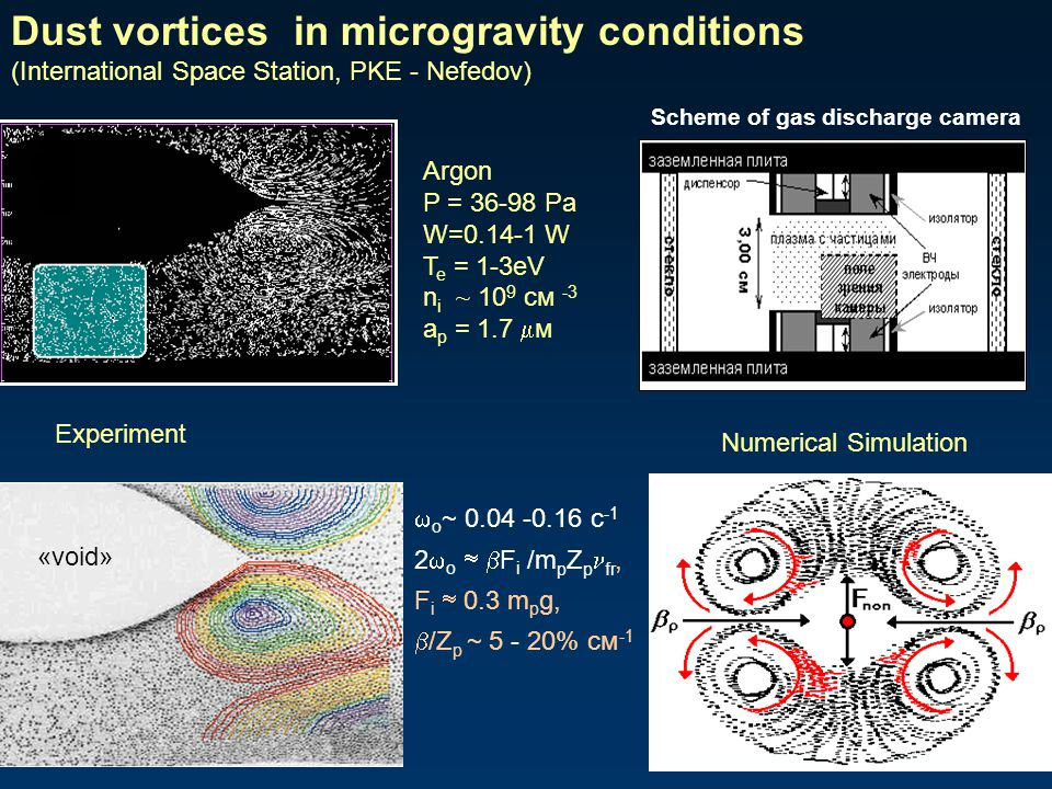 Dust vortices in microgravity conditions