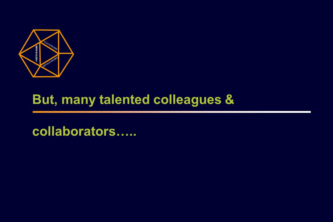 But, many talented colleagues & collaborators…..