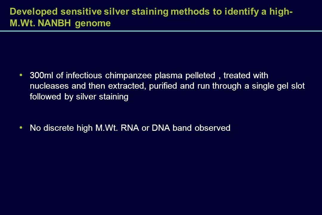 Developed sensitive silver staining methods to identify a high-M. Wt