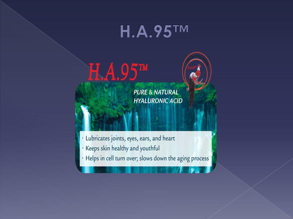 H.A.95™
