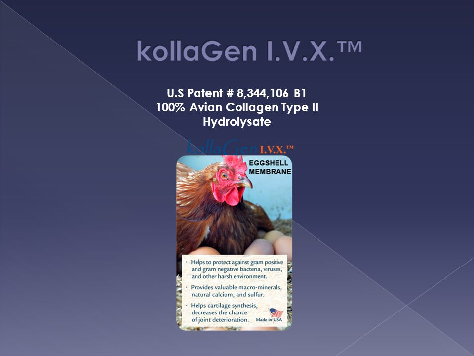 100% Avian Collagen Type II Hydrolysate
