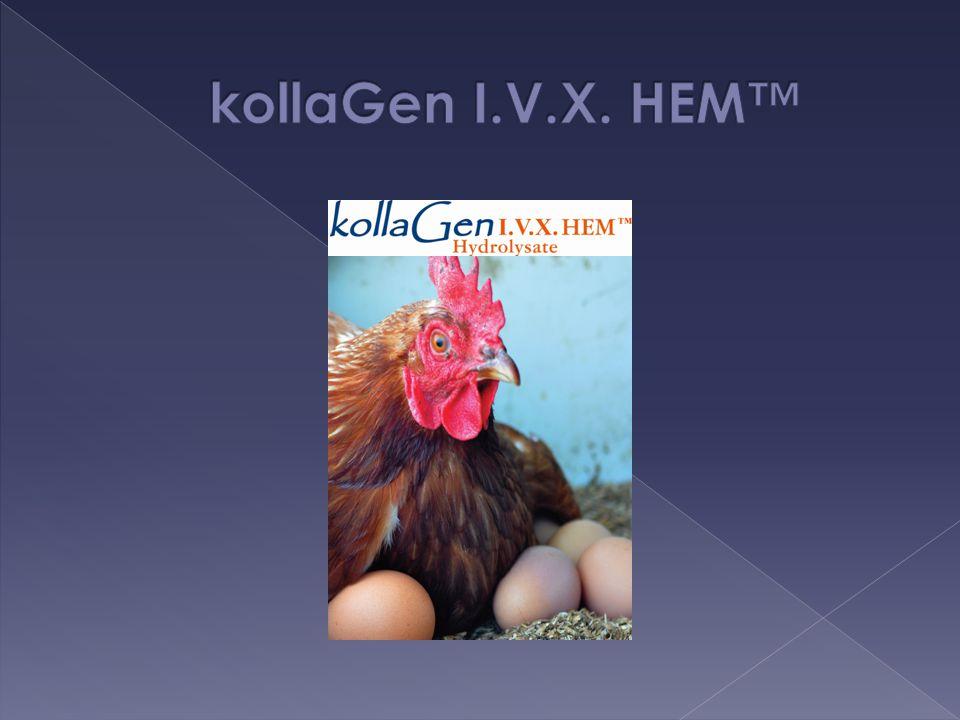 kollaGen I.V.X. HEM™