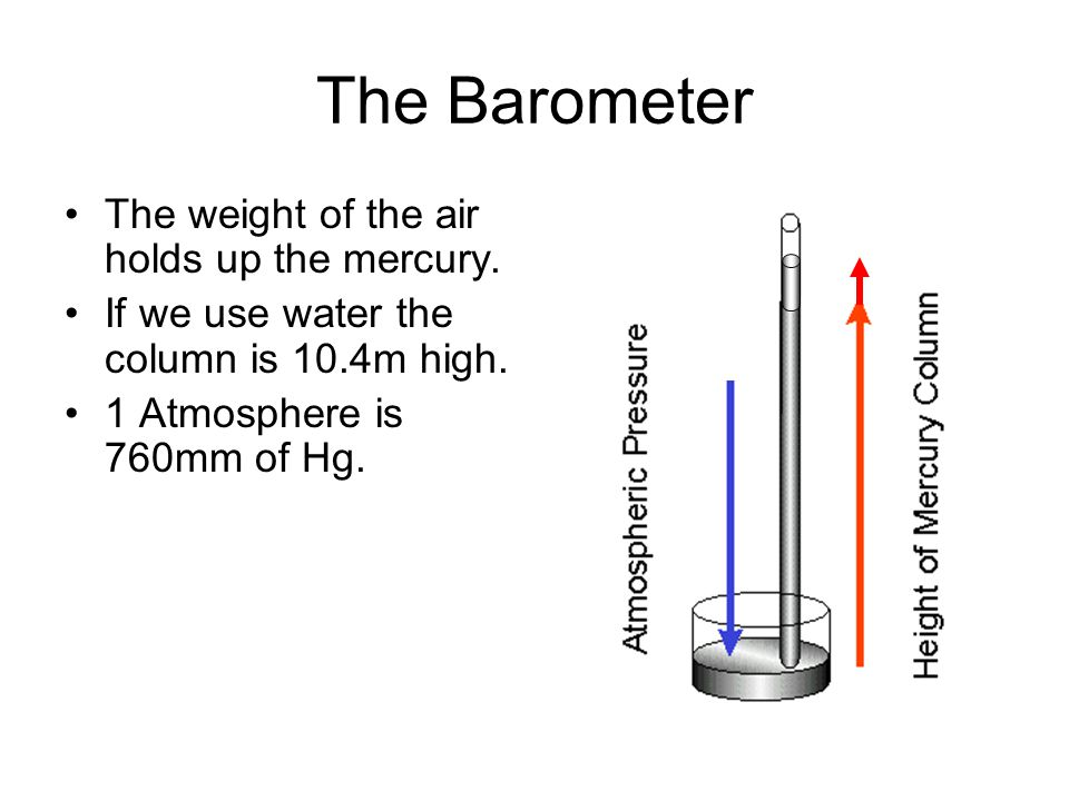 The Barometer The weight of the air holds up the mercury.