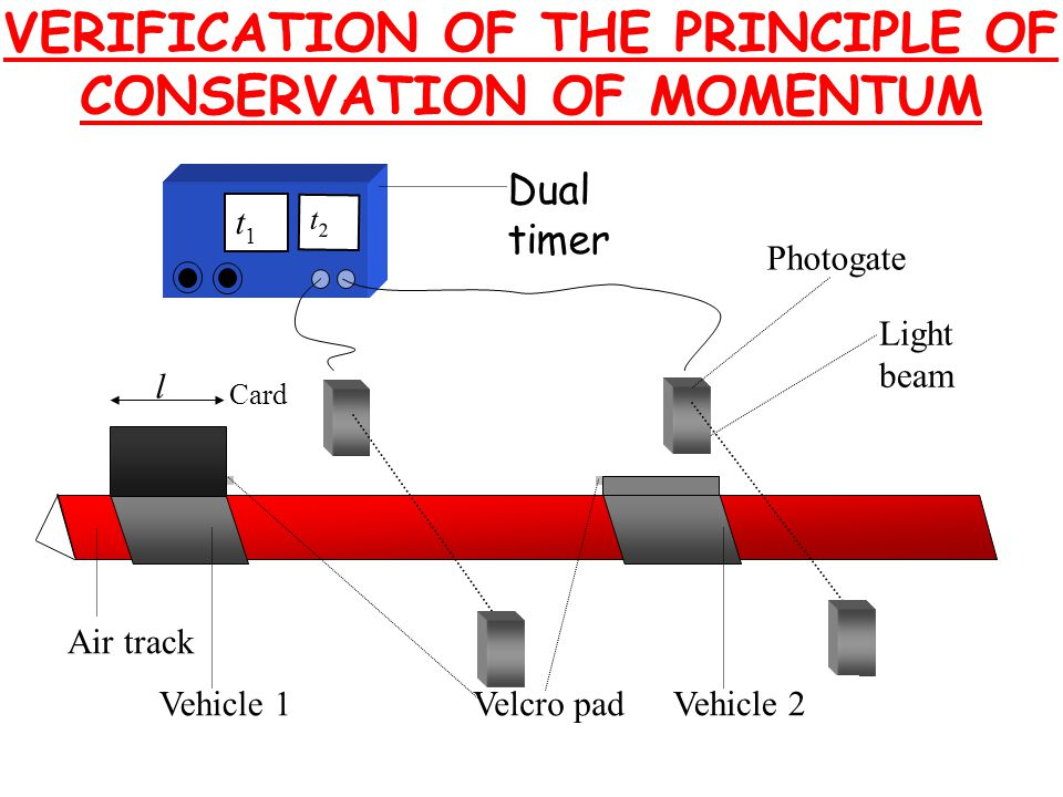 VERIFICATION OF THE PRINCIPLE OF CONSERVATION OF MOMENTUM