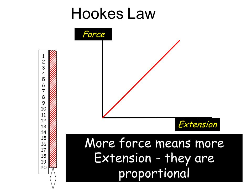 More force means more Extension - they are proportional